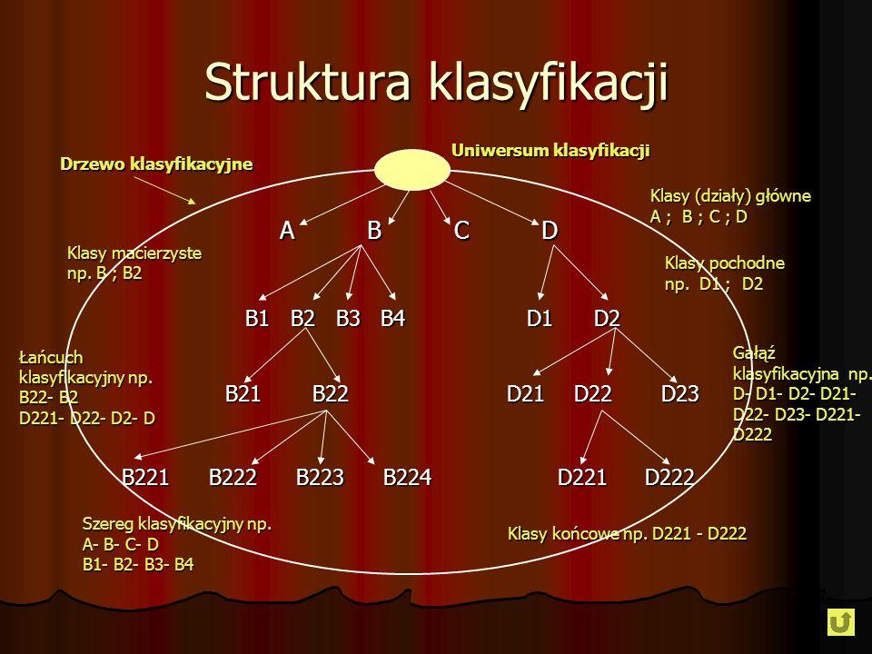 Struktura klasyfikacji ABCDABCDABCDABCD B1 B2 B3 B4 D1D2 B21B22 D21D22D23 B221B222B223B224D221D222 Uniwersum klasyfikacji Drzewo klasyfikacyjne Klasy