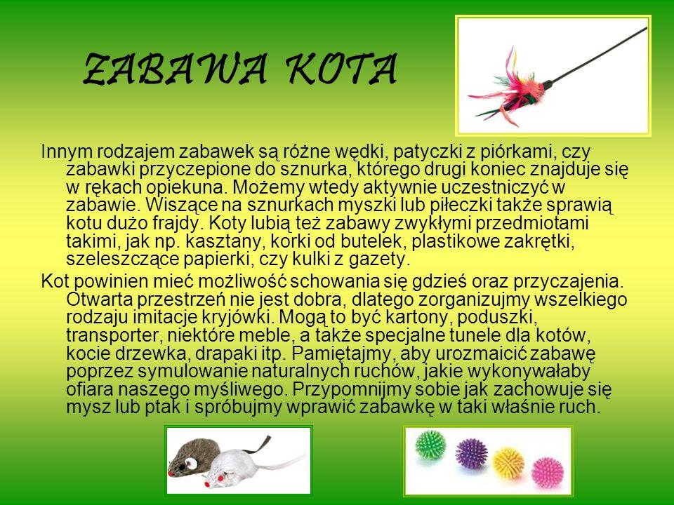 ZABAWA KOTA Innym rodzajem zabawek są różne wędki, patyczki z piórkami, czy zabawki przyczepione do sznurka, którego drugi koniec znajduje się w rękach opiekuna.