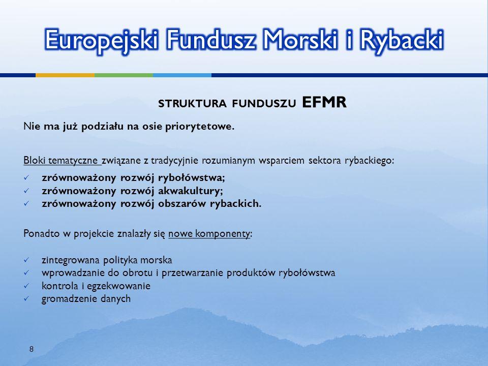 STRUKTURA FUNDUSZU EFMR N ie ma już podziału na osie priorytetowe. Bloki tematyczne związane z tradycyjnie rozumianym wsparciem sektora rybackiego: zr