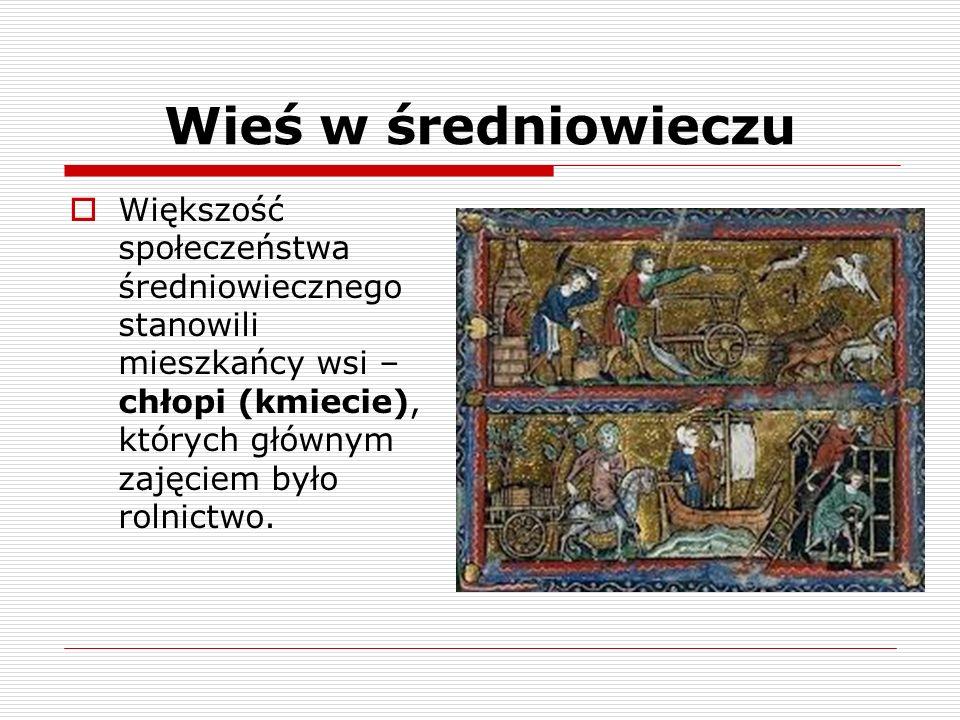 Wieś w średniowieczu W XIII w.