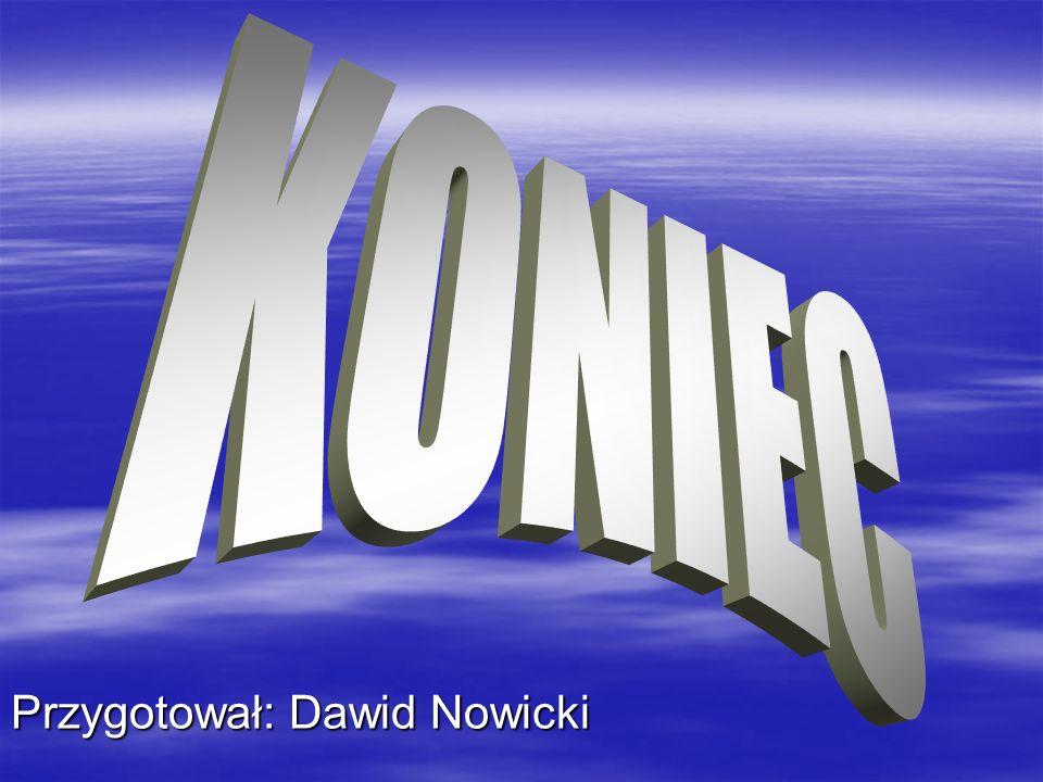 Przygotował: Dawid Nowicki