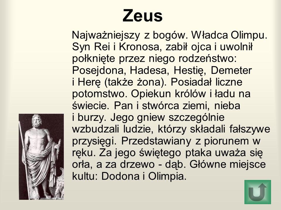 Zeus Najważniejszy z bogów. Władca Olimpu. Syn Rei i Kronosa, zabił ojca i uwolnił połknięte przez niego rodzeństwo: Posejdona, Hadesa, Hestię, Demete