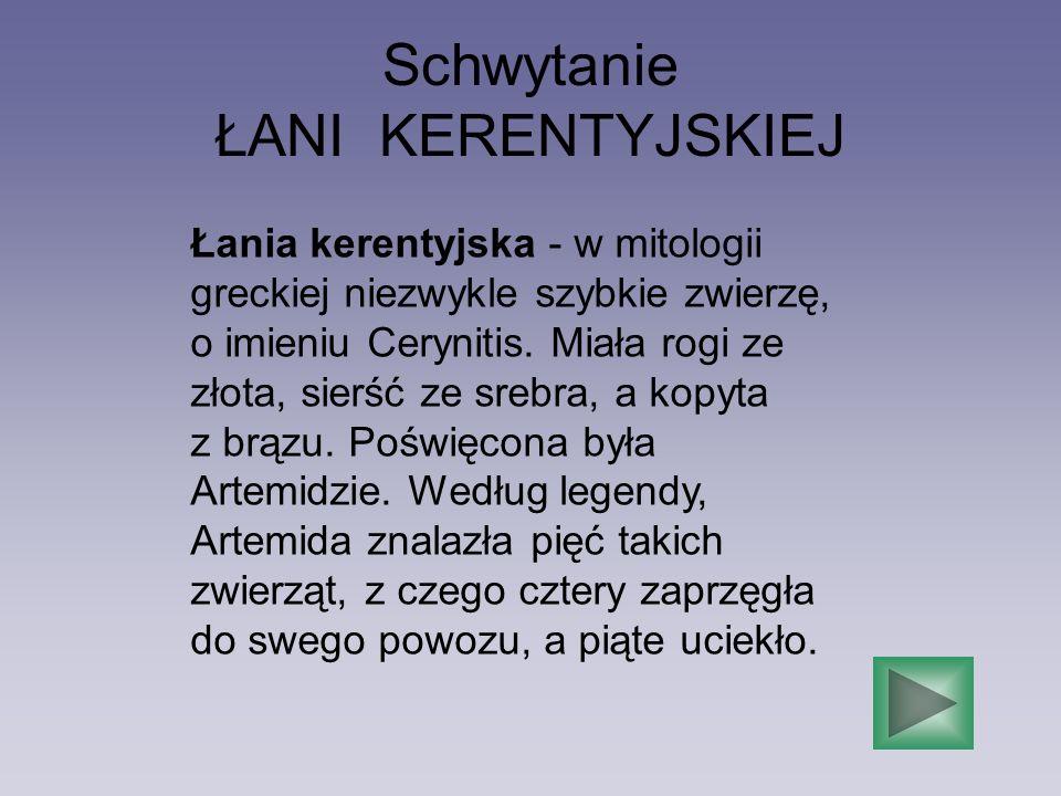Schwytanie ŁANI KERENTYJSKIEJ Łania kerentyjska - w mitologii greckiej niezwykle szybkie zwierzę, o imieniu Cerynitis. Miała rogi ze złota, sierść ze