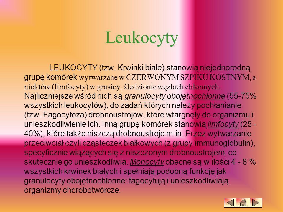 Jeszcze mniej licznie reprezentowane są granulocyty kwasochłonne (tzw.