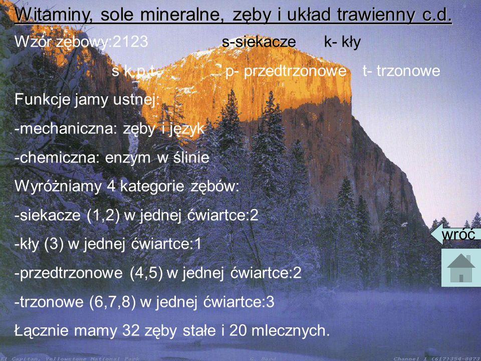 Witaminy, sole mineralne, zęby i układ trawienny c.d. Wzór zębowy:2123 s-siekacze k- kły s k p t p- przedtrzonowe t- trzonowe Funkcje jamy ustnej: -me