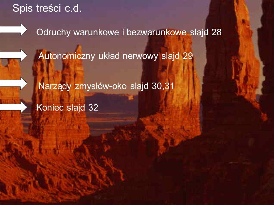 Spis treści c.d. Odruchy warunkowe i bezwarunkowe slajd 28 Autonomiczny układ nerwowy slajd 29 Narządy zmysłów-oko slajd 30,31 Koniec slajd 32