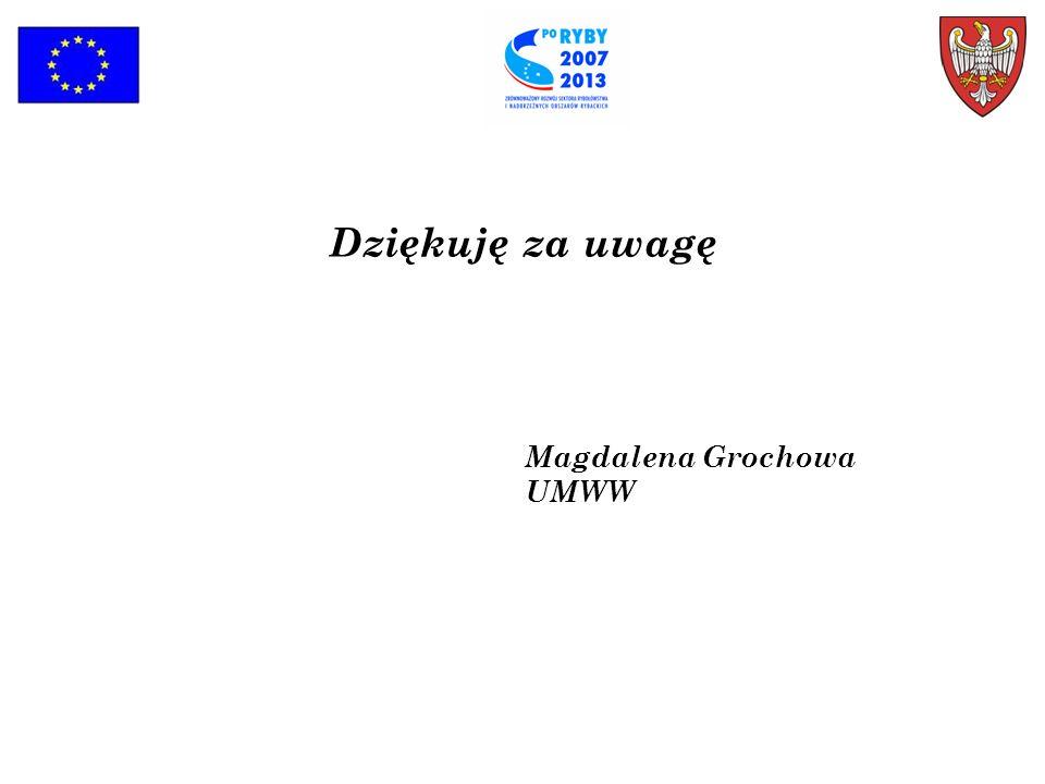 Dziękuję za uwagę Magdalena Grochowa UMWW