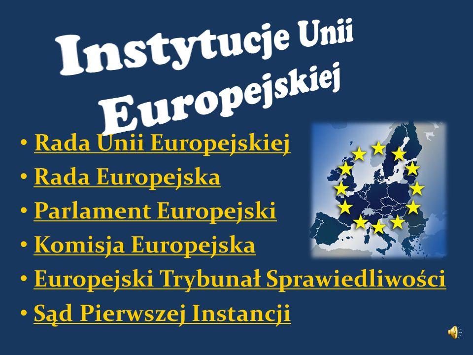 Rada Unii Europejskiej Rada Europejska Parlament Europejski Komisja Europejska Europejski Trybunał Sprawiedliwości Sąd Pierwszej Instancji