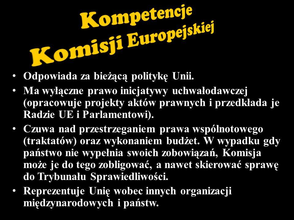 Odpowiada za bieżącą politykę Unii.