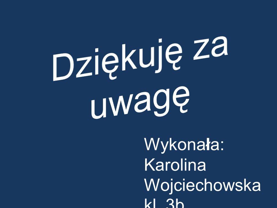 Wykonała: Karolina Wojciechowska kl. 3b