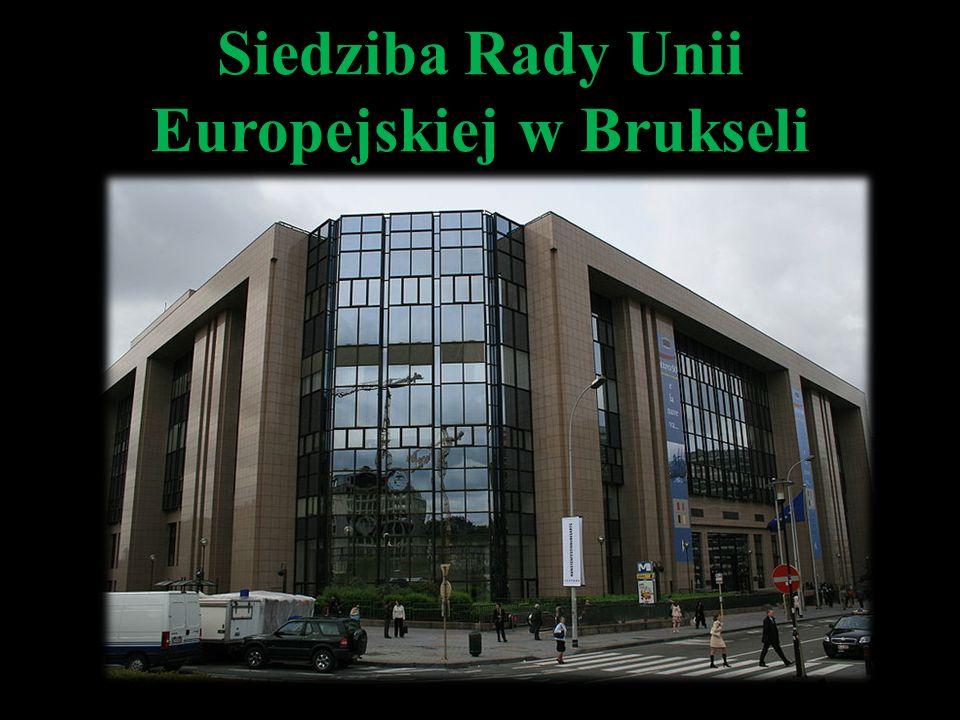 Jako główny organ prawodawczy ma prawo podejmowania wszystkich rodzajów uchwał we wszystkich sprawach związanych z funkcjonowaniem UE (uprawnienie to jest w wielu wypadkach ograniczone przez inicjatywę uchwałodawczą Komisji).