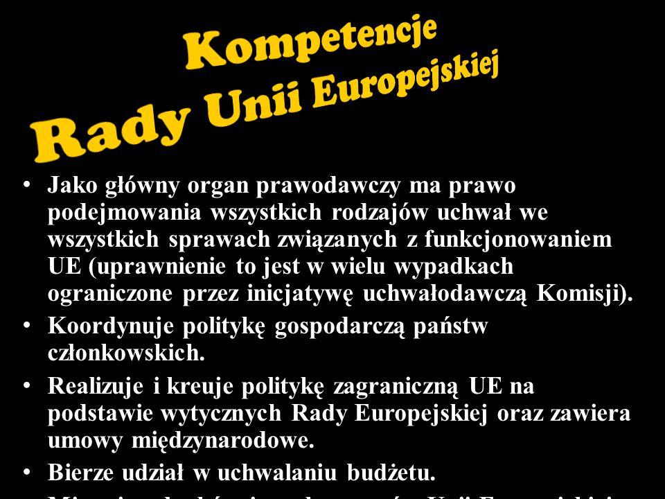 Rozstrzyga spory między państwami członkowskimi oraz między nimi a organami Unii.