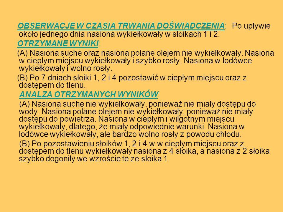 OBSERWACJE W CZASIA TRWANIA DOŚWIADCZENIA: Po upływie około jednego dnia nasiona wykiełkowały w słoikach 1 i 2. OTRZYMANE WYNIKI: (A) Nasiona suche or