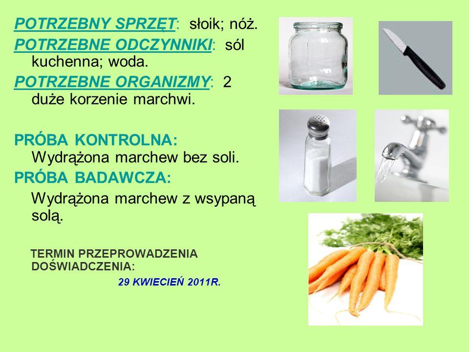 POTRZEBNY SPRZĘT: słoik; nóż. POTRZEBNE ODCZYNNIKI: sól kuchenna; woda. POTRZEBNE ORGANIZMY: 2 duże korzenie marchwi. PRÓBA KONTROLNA: Wydrążona march
