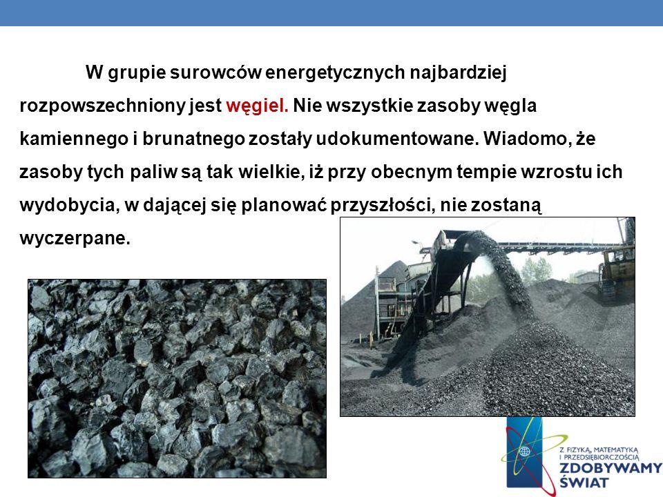W grupie surowców energetycznych najbardziej rozpowszechniony jest węgiel. Nie wszystkie zasoby węgla kamiennego i brunatnego zostały udokumentowane.