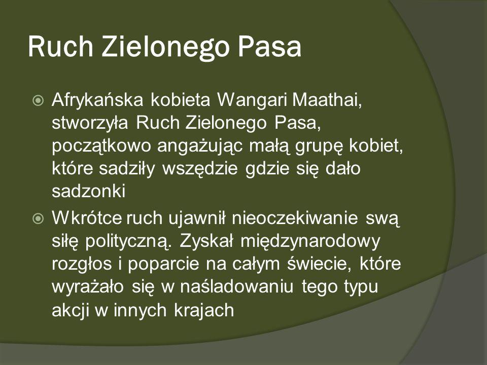Ruch Zielonego Pasa Afrykańska kobieta Wangari Maathai, stworzyła Ruch Zielonego Pasa, początkowo angażując małą grupę kobiet, które sadziły wszędzie