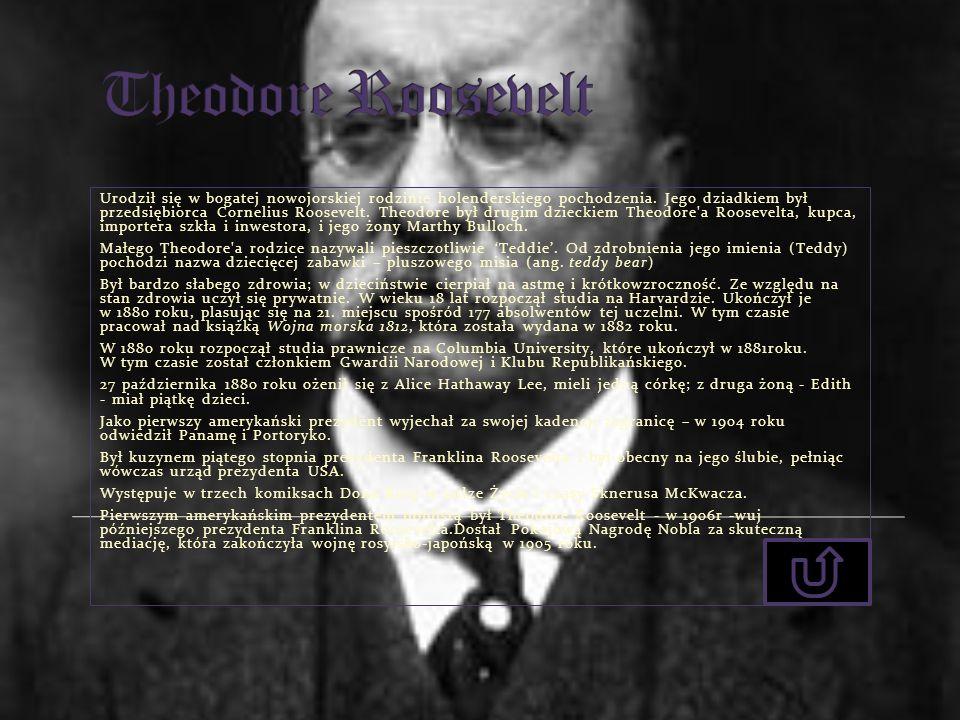 Urodził się w bogatej nowojorskiej rodzinie holenderskiego pochodzenia. Jego dziadkiem był przedsiębiorca Cornelius Roosevelt. Theodore był drugim dzi