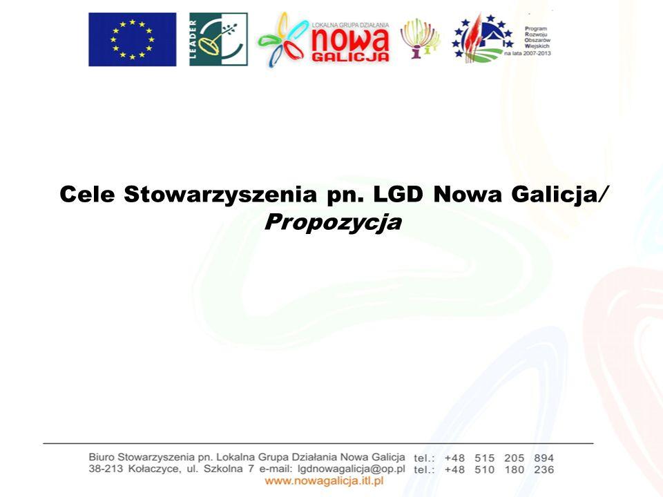 Cele Stowarzyszenia pn. LGD Nowa Galicja/ Propozycja