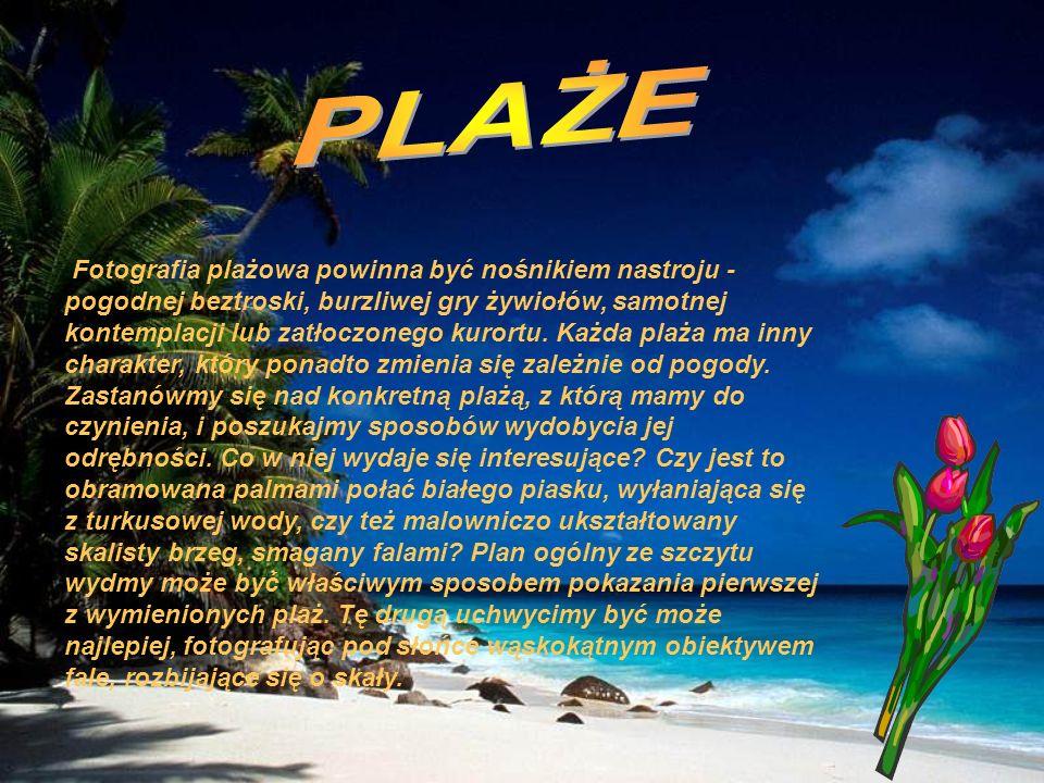 Fotografia plażowa powinna być nośnikiem nastroju - pogodnej beztroski, burzliwej gry żywiołów, samotnej kontemplacji lub zatłoczonego kurortu. Każda