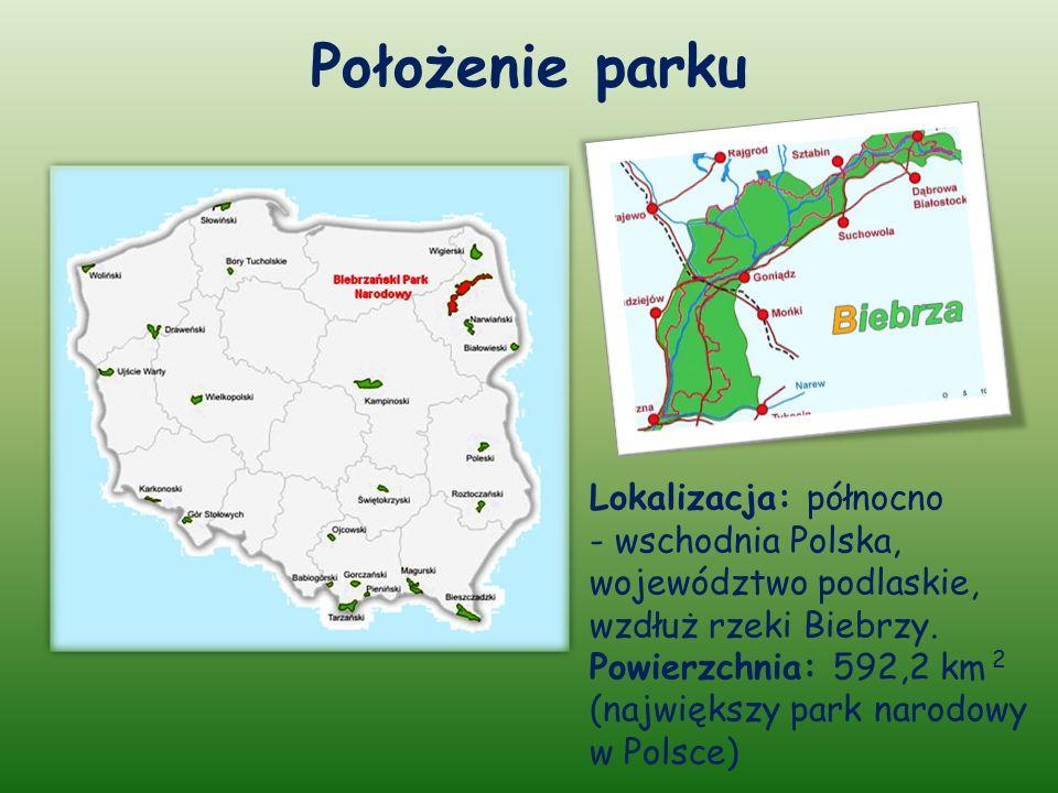 Położenie parku Lokalizacja: północno - wschodnia Polska, województwo podlaskie, wzdłuż rzeki Biebrzy.