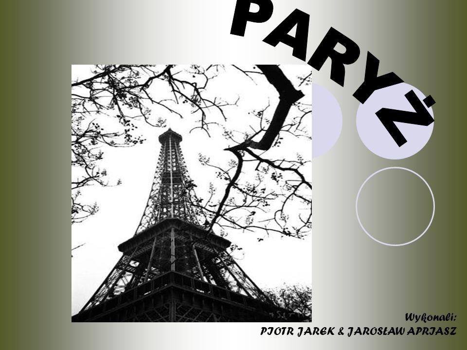 PARYŻ Paryż jest położony na obu brzegach Sekwany (w granicach miasta Sekwana płynie na wys.