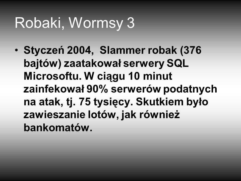 Robaki, Wormsy 3 Styczeń 2004, Slammer robak (376 bajtów) zaatakował serwery SQL Microsoftu.