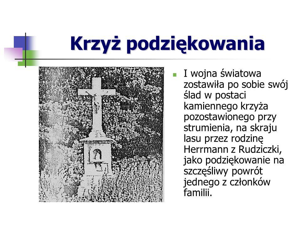 Krzyż podziękowania I wojna światowa zostawiła po sobie swój ślad w postaci kamiennego krzyża pozostawionego przy strumienia, na skraju lasu przez rodzinę Herrmann z Rudziczki, jako podziękowanie na szczęśliwy powrót jednego z członków familii.