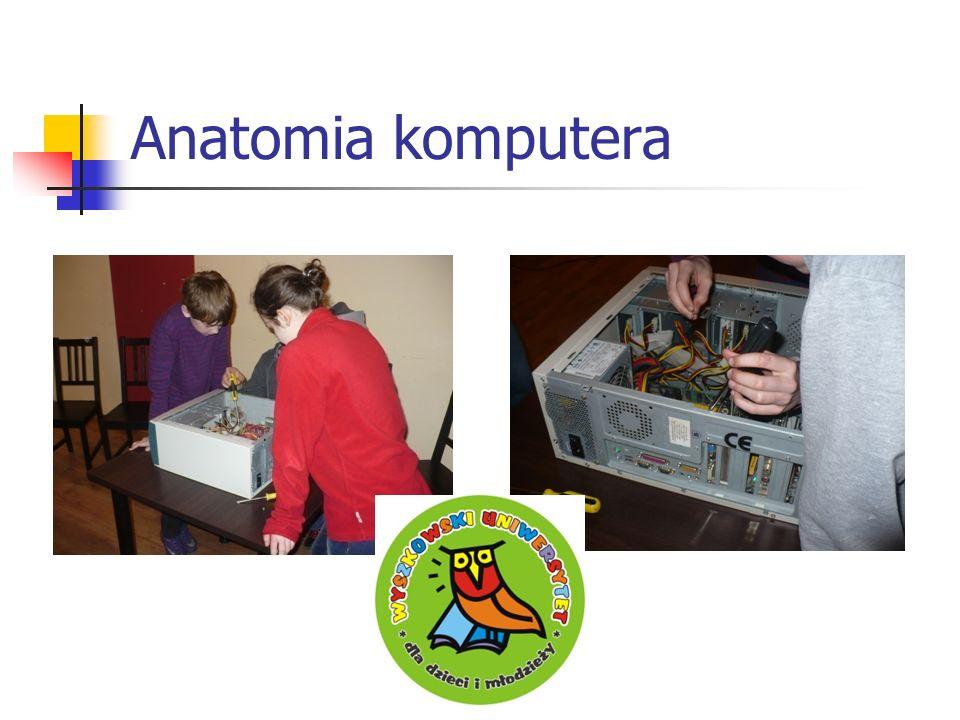 Anatomia komputera