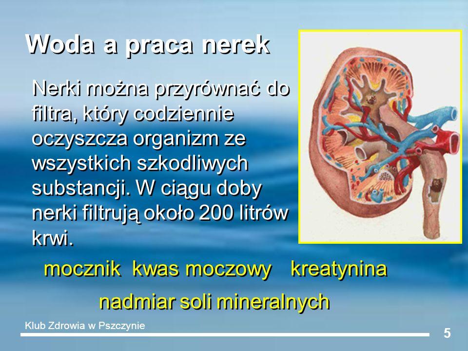 6 Budowa nerki i nefronu A – żyła nerkowa B – tętnica nerkowa C – moczowód D – rdzeń nerki E – miedniczka nerkowa F – kora nerki 1,2 – pętla Henlego 3 – naczynia włosowate 4 – kanalik nerkowy kręty I 5 – kłębuszek nerkowy 6 – kanalik nerkowy kręty II A – żyła nerkowa B – tętnica nerkowa C – moczowód D – rdzeń nerki E – miedniczka nerkowa F – kora nerki 1,2 – pętla Henlego 3 – naczynia włosowate 4 – kanalik nerkowy kręty I 5 – kłębuszek nerkowy 6 – kanalik nerkowy kręty II Im więcej wody wypijamy, tym sprawniej i lepiej działa nasz system filtracyjny.