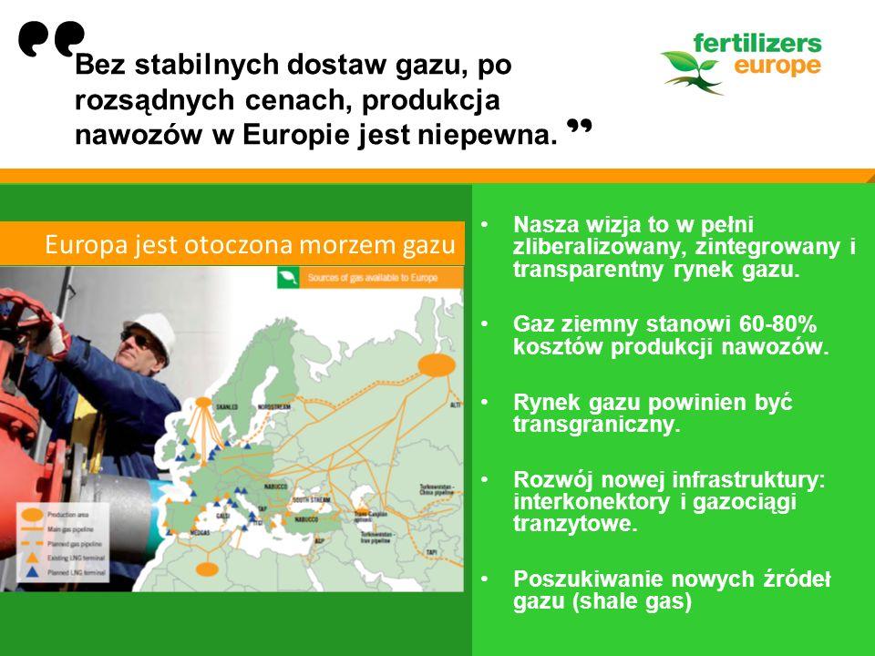 Nasza wizja to w pełni zliberalizowany, zintegrowany i transparentny rynek gazu. Gaz ziemny stanowi 60-80% kosztów produkcji nawozów. Rynek gazu powin