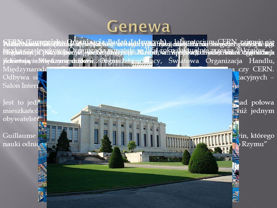 W Genewie mieszczą się siedziby wielu organizacji międzynarodowych, takich jak Organizacja Narodów Zjednoczonych (siedziba europejska), Światowa Organizacja Zdrowia, Międzynarodowa Organizacja Pracy, Światowa Organizacja Handlu, Międzynarodowy Ruch Czerwonego Krzyża i Czerwonego Półksiężyca czy CERN.