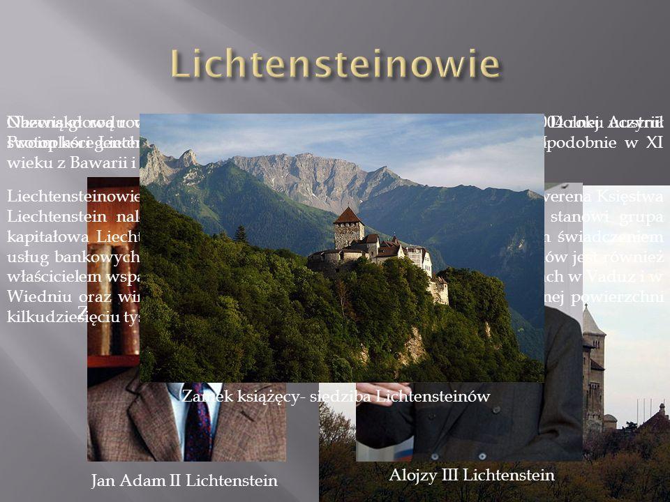 Nazwisko rodu wywodzi się od zamku Liechtenstein położonego w Dolnej Austrii.