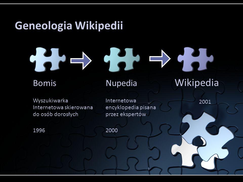 Bomis Wyszukiwarka Internetowa skierowana do osób dorosłych 1996 Nupedia Internetowa encyklopedia pisana przez ekspertów 2000 Wikipedia 2001 Geneologi