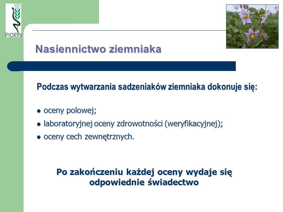 Nasiennictwoziemniaka Nasiennictwo ziemniaka Podczas wytwarzania sadzeniaków ziemniaka dokonuje się: oceny polowej; oceny polowej; laboratoryjnej ocen