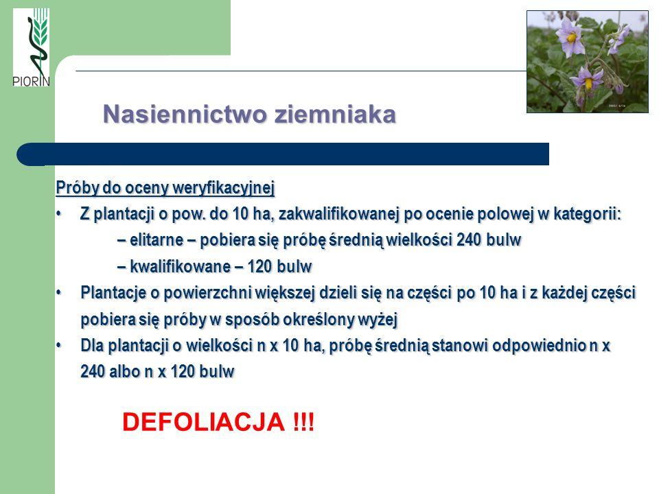Nasiennictwo ziemniaka Próby do oceny weryfikacyjnej Z plantacji o pow. do 10 ha, zakwalifikowanej po ocenie polowej w kategorii: Z plantacji o pow. d