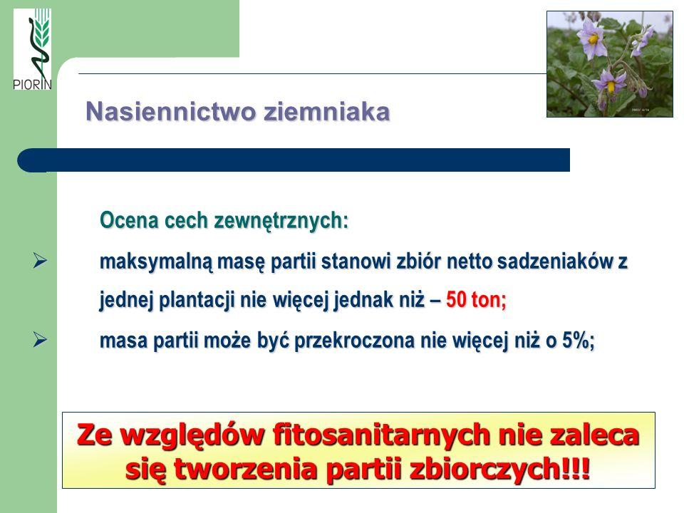 Ocena cech zewnętrznych: maksymalną masę partii stanowi zbiór netto sadzeniaków z jednej plantacji nie więcej jednak niż – 50 ton; maksymalną masę par