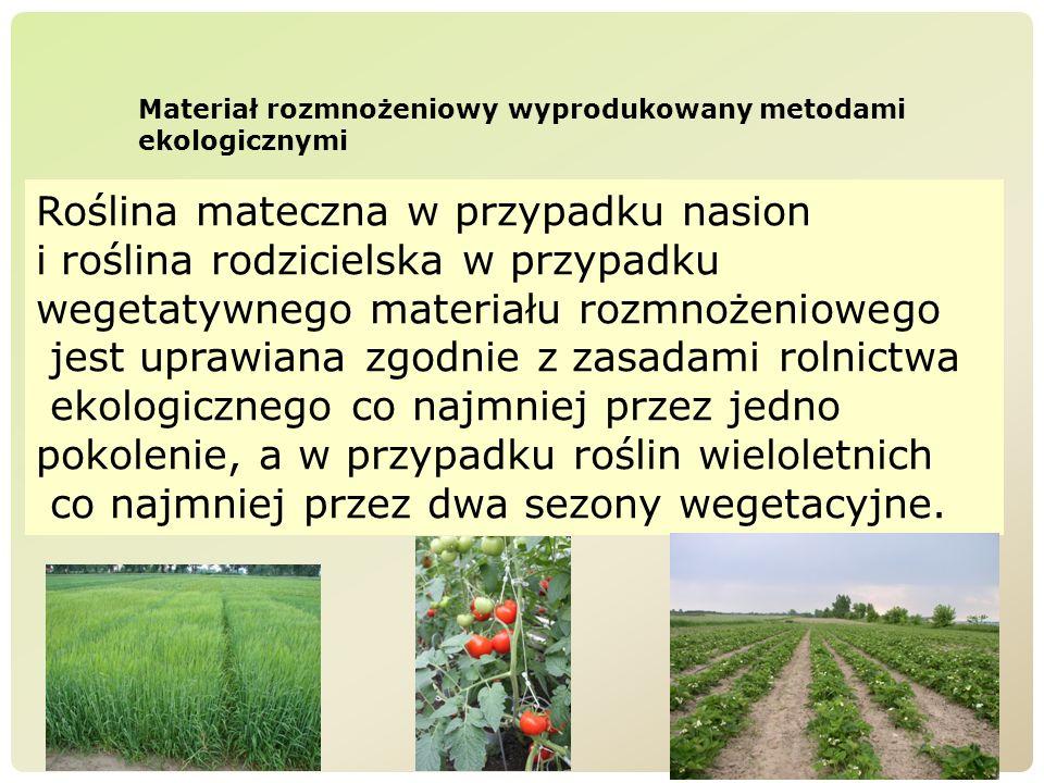 Materiał rozmnożeniowy wyprodukowany metodami ekologicznymi Roślina mateczna w przypadku nasion i roślina rodzicielska w przypadku wegetatywnego mater