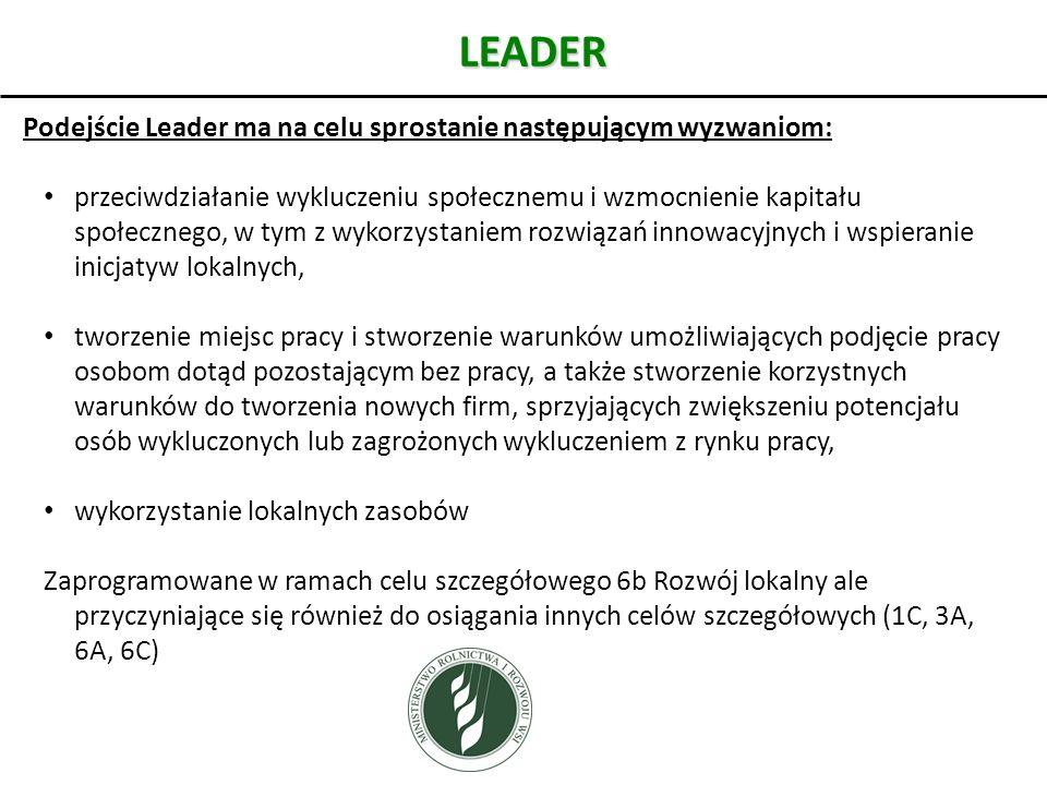 LEADER Podejście Leader ma na celu sprostanie następującym wyzwaniom: przeciwdziałanie wykluczeniu społecznemu i wzmocnienie kapitału społecznego, w t