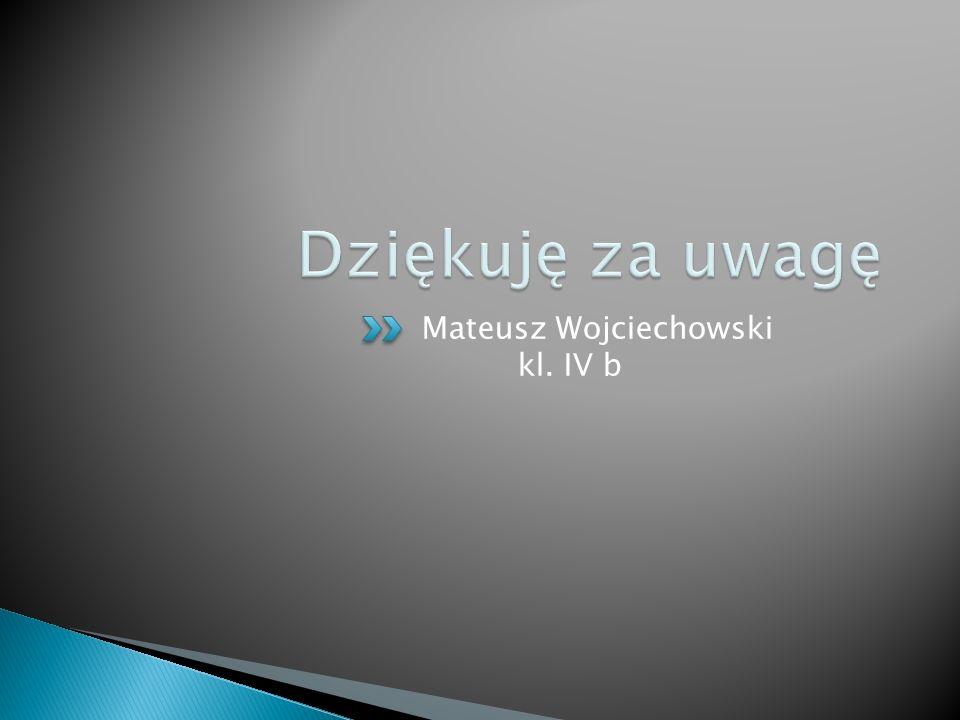 Mateusz Wojciechowski kl. IV b