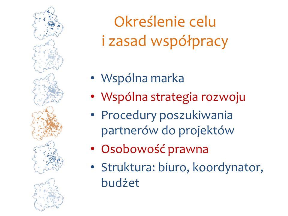 Określenie celu i zasad współpracy Wspólna marka Wspólna strategia rozwoju Procedury poszukiwania partnerów do projektów Osobowość prawna Struktura: b
