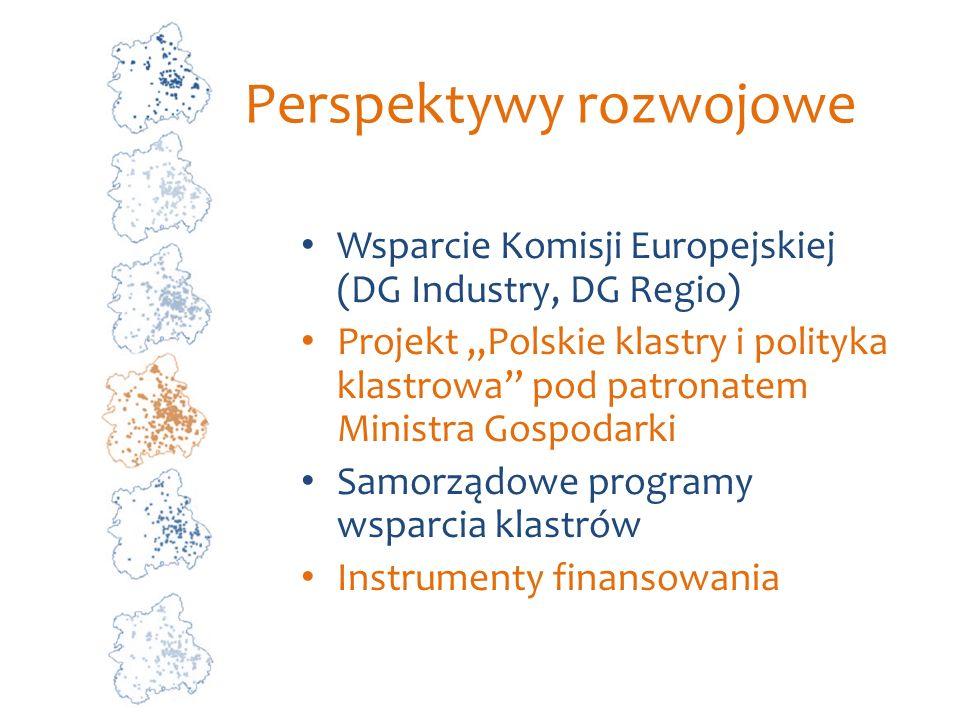 Perspektywy rozwojowe Wsparcie Komisji Europejskiej (DG Industry, DG Regio) Projekt Polskie klastry i polityka klastrowa pod patronatem Ministra Gospo