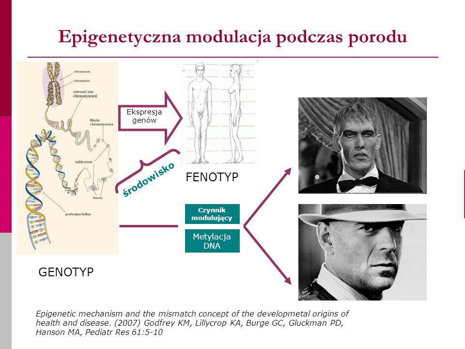 Epigenetyczna modulacja podczas porodu Czynnik modulujący GENOTYP FENOTYP środowisko Metylacja DNA Ekspresja genów Epigenetic mechanism and the mismatch concept of the developmetal origins of health and disease.