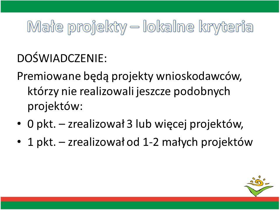 DOŚWIADCZENIE: Premiowane będą projekty wnioskodawców, którzy nie realizowali jeszcze podobnych projektów: 0 pkt. – zrealizował 3 lub więcej projektów