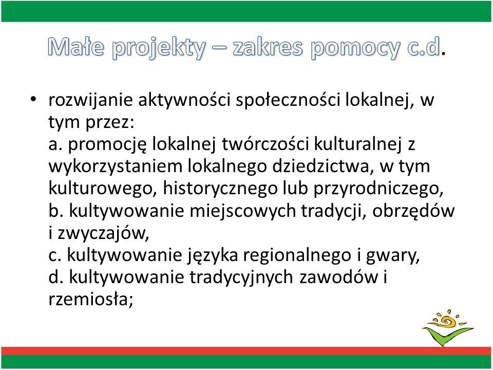 rozwijanie turystyki lub rekreacji na obszarze objętym LSR, w tym przez: a.