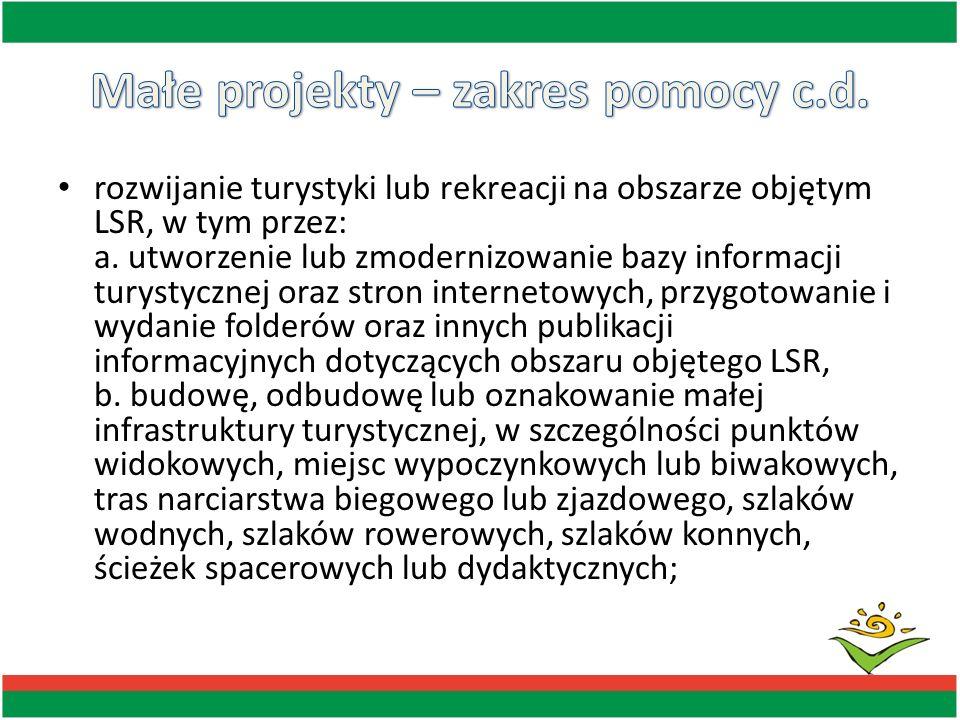 rozwijanie turystyki lub rekreacji na obszarze objętym LSR, w tym przez: a. utworzenie lub zmodernizowanie bazy informacji turystycznej oraz stron int