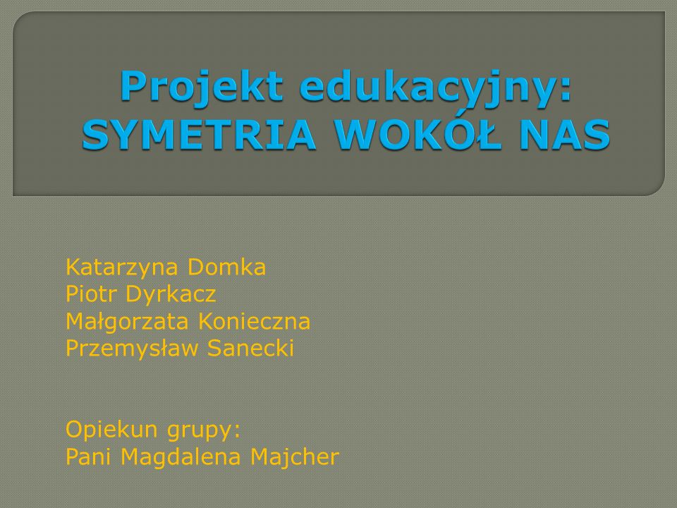 Katarzyna Domka Piotr Dyrkacz Małgorzata Konieczna Przemysław Sanecki Opiekun grupy: Pani Magdalena Majcher