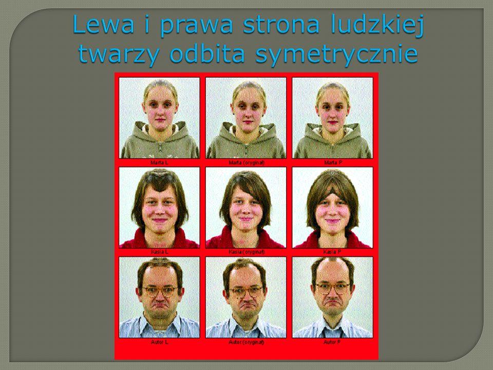 Lewa i prawa strona ludzkiej twarzy odbita symetrycznie
