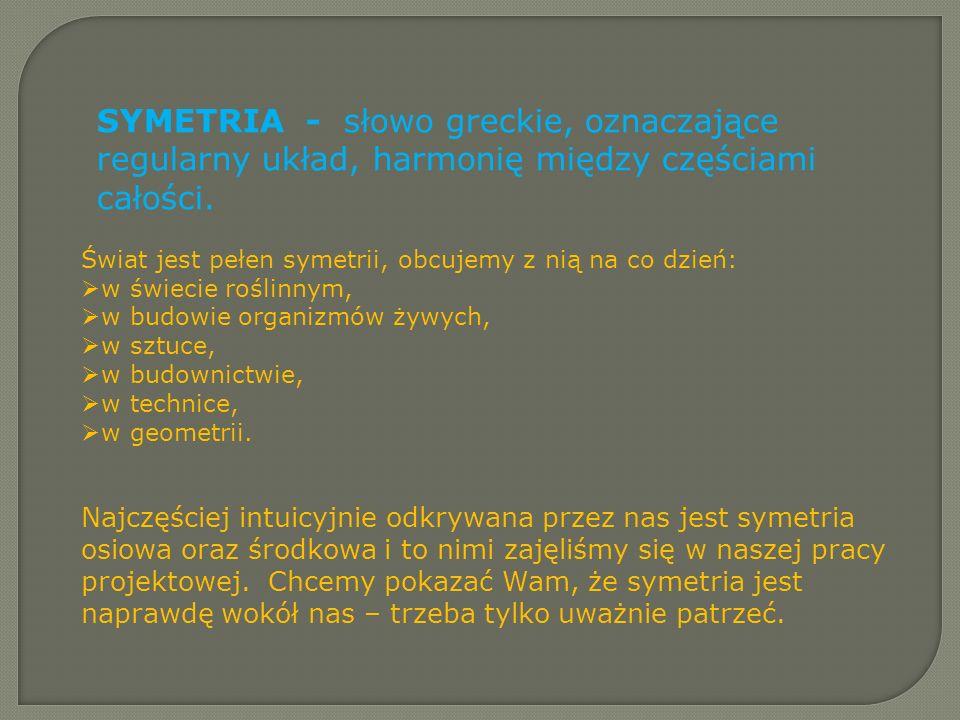 SYMETRIA - słowo greckie, oznaczające regularny układ, harmonię między częściami całości. Świat jest pełen symetrii, obcujemy z nią na co dzień: w świ