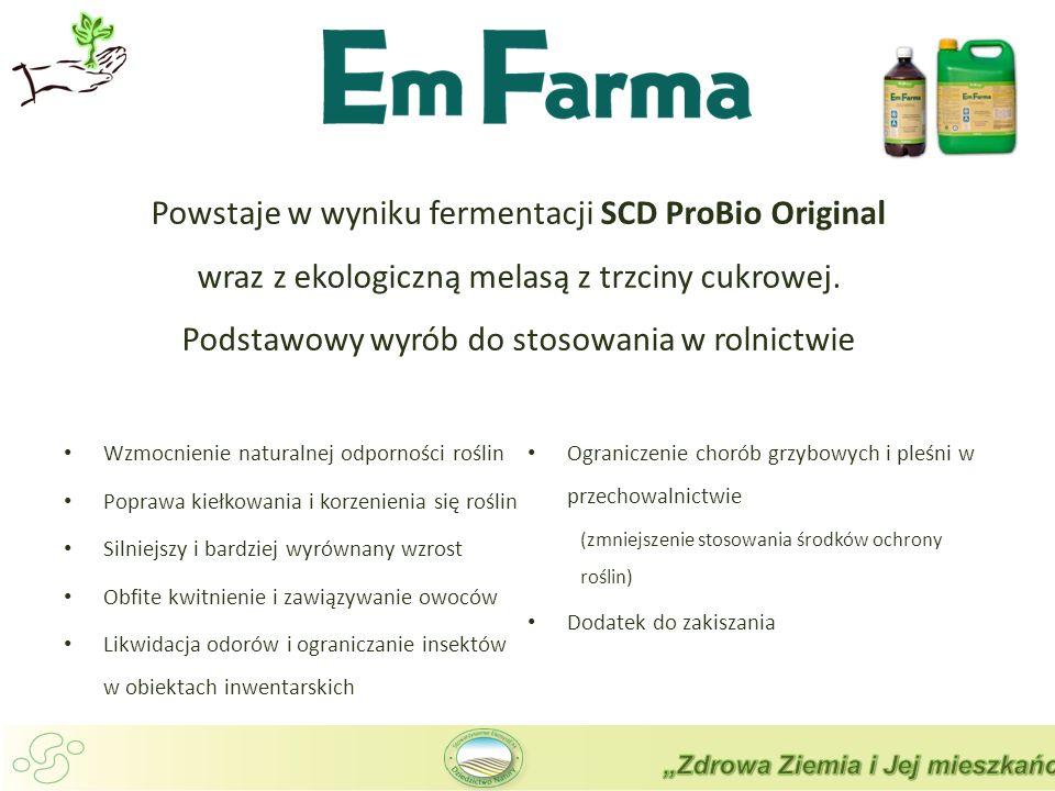 Wzmocnienie naturalnej odporności roślin Poprawa kiełkowania i korzenienia się roślin Silniejszy i bardziej wyrównany wzrost Obfite kwitnienie i zawiązywanie owoców Likwidacja odorów i ograniczanie insektów w obiektach inwentarskich Ograniczenie chorób grzybowych i pleśni w przechowalnictwie (zmniejszenie stosowania środków ochrony roślin) Dodatek do zakiszania Powstaje w wyniku fermentacji SCD ProBio Original wraz z ekologiczną melasą z trzciny cukrowej.