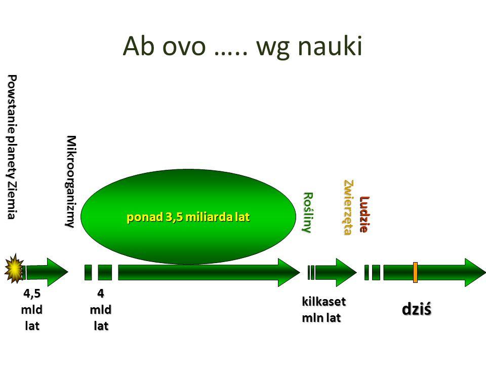 Świat mikroorganizmów